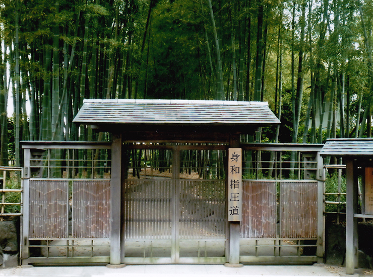 Ecole Shiatsu - Shin Wa Shiatsu Do